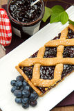 Blueberry tarts Royalty Free Stock Photo
