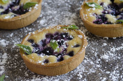 Blueberry tarts Royalty Free Stock Photos