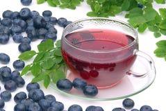 Blueberry tea. Herbal blueberry tea, fruit tea Stock Images
