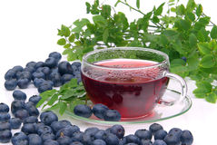 Blueberry tea Royalty Free Stock Image