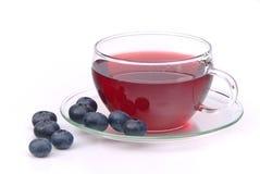 Blueberry tea. Fruit tea, blue blueberry tea Royalty Free Stock Image