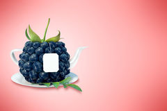 Blueberry tea cup. Blackberry tea cup. Healthy food. Blackberry drink Royalty Free Stock Photos
