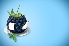 Blueberry tea cup Stock Images