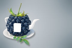 Blueberry tea cup Stock Photography
