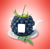 Blueberry tea cup Royalty Free Stock Image