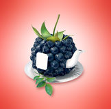 Blueberry tea cup. Healthy food. Blueberry drink Royalty Free Stock Photography