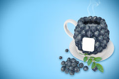 Blueberry tea cup Stock Image