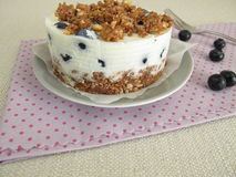Blueberry torte with graham cracker crust, yogurt and crumbles Royalty Free Stock Photo
