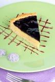 Blueberry and vanilla custard cream tart Stock Images