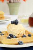 Blueberry vanilla ice cream waffles Stock Image