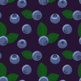 Blueberry vector seamless pattern. Natural fresh ripe tasty blueberries with green leaves. Royalty Free Stock Photography