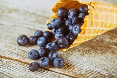 Blueberry with waffle cone on wooden table. Blueberry with top view of waffle cone on wooden table royalty free stock photo