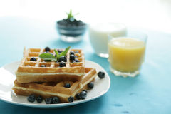 Blueberry waffles royalty free stock image
