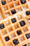 Blueberry Waffles Closeup Stock Photo