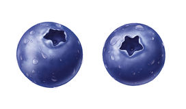 Blueberry with water drops Stock Photography