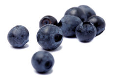 Blueberry on white Stock Image
