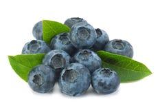 Blueberry on white background Stock Photo