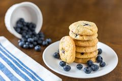 Blueberry and White Chocolate Chip Cookies with fresh blueberries royalty free stock photo