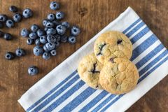 Blueberry and White Chocolate Chip Cookies with fresh blueberries stock image