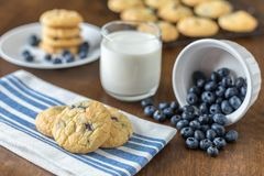 Blueberry and White Chocolate Chip Cookies with fresh blueberries stock photos