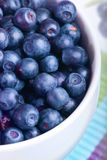 Blueberry in white plate Stock Images