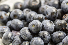 Blueberry. On white plateand white background Royalty Free Stock Photography