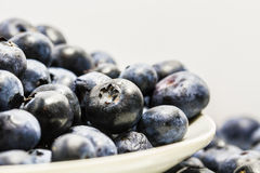 Blueberry. On white plateand white background Royalty Free Stock Photo