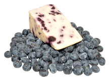 Blueberry White Stilton Cheese Royalty Free Stock Photos