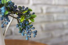 White vases and blueberries. A bush of blueberry, bog whortleberry, great bilberry. royalty free stock photo