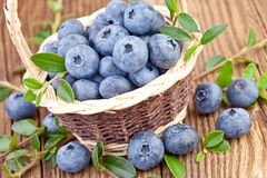Blueberry in wicker basket Royalty Free Stock Photo