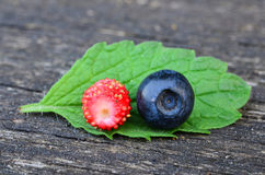 Blueberry and wild strawberry Royalty Free Stock Image