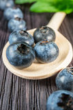 Blueberry on wooden board Royalty Free Stock Image