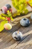 Blueberry on wooden table Stock Photo