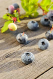 Blueberry on wooden table Royalty Free Stock Photo