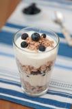 Blueberry Yoghurt Parfait Stock Image