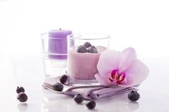 Blueberry Yogurt Royalty Free Stock Photography