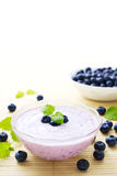 Blueberry yogurt. Bowl of blueberry yogurt dessert decorated with blueberries and balm leaves stock photography