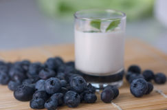 Blueberry and yogurt Stock Photos