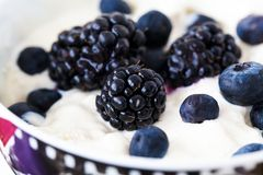 Blueberry with yogurt Royalty Free Stock Photos
