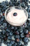 Blueberry yogurt Royalty Free Stock Images