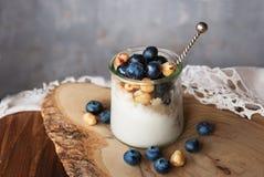 Blueberry yogurt dessert Stock Images