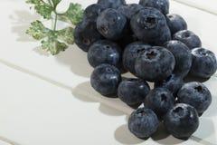 Blueberrys Στοκ εικόνες με δικαίωμα ελεύθερης χρήσης