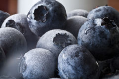 Blueberrys congelados Imágenes de archivo libres de regalías
