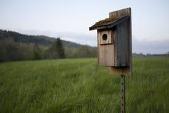 Bluebird birdhouse Stock Photo