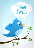 Bluebird on a branch. A pretty blue bird on a branch says : tweet tweet Stock Images