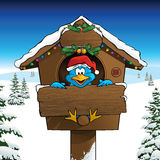Bluebird celebrating Christmas in a winter landscape Royalty Free Stock Photography