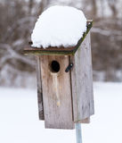 A Bluebird House With Snow On The Roof Stock Photos