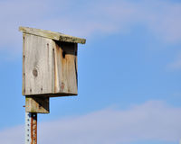 Bluebird Nesting Box Royalty Free Stock Images