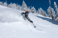 Bluebird Perfect. Woman skiing deep powder snow on a perfect winter day Stock Images