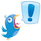 Bluebird Shouting Imagens de Stock